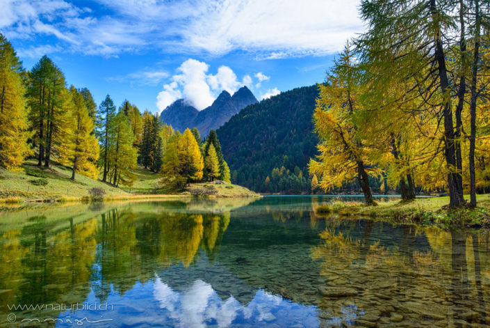 Graubünden Palpuogna See