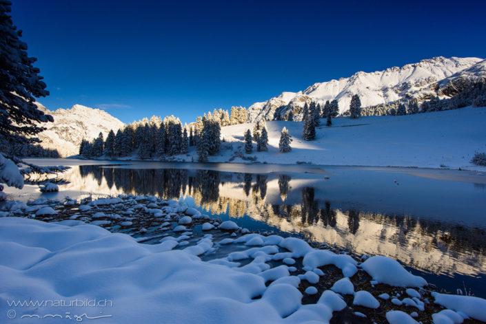 Graubünden Palpuogna Schnee