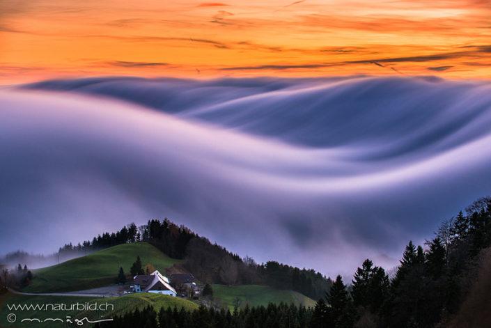 Nebelwelle Belchen Jura