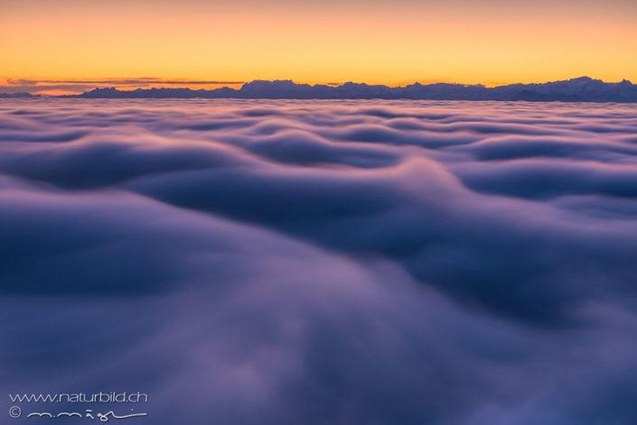 Nebelmeer Mittelland Alpen