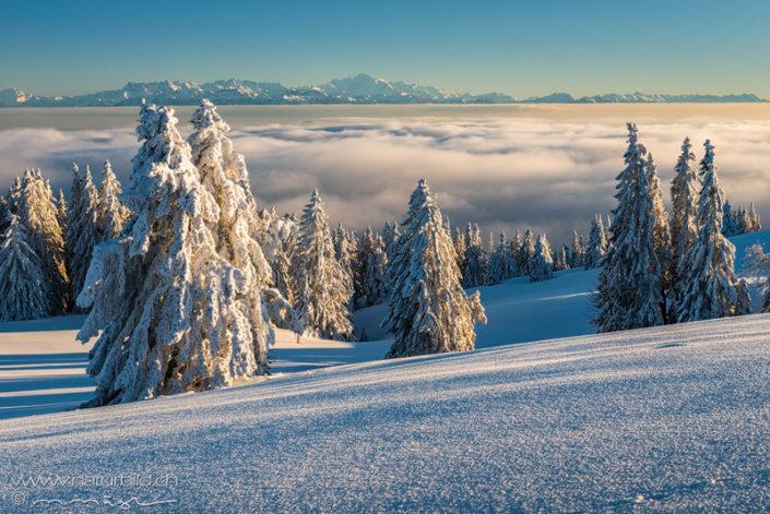 Waadt Chasseron Nebelmeer