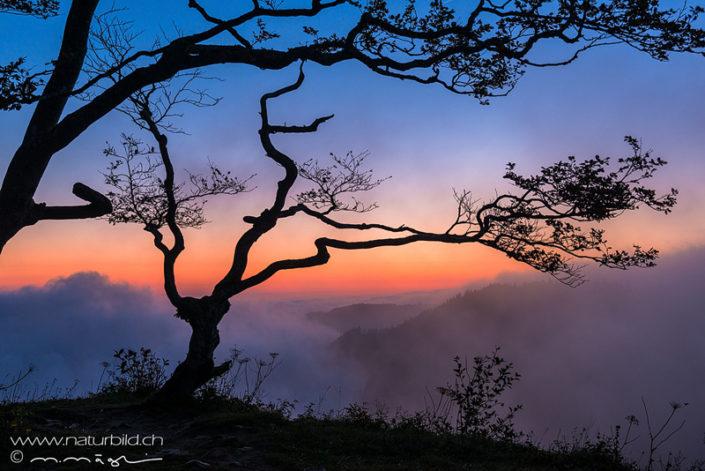 Waadt Creux du Van Sonnenuntergang