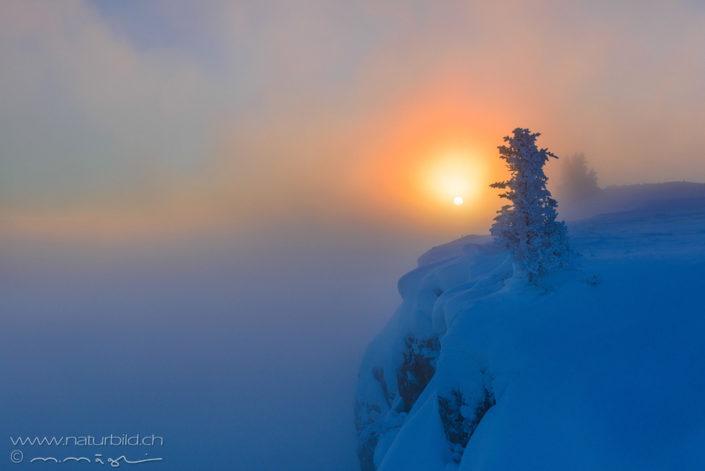 Sonne Schnee Jura