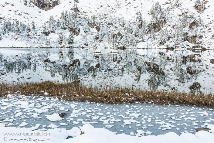 Seebergsee Diemtigtal Winter