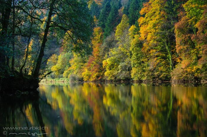 Doubs Jura Herbst