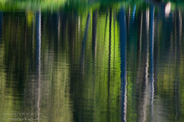 Etang Wasser abstrakt