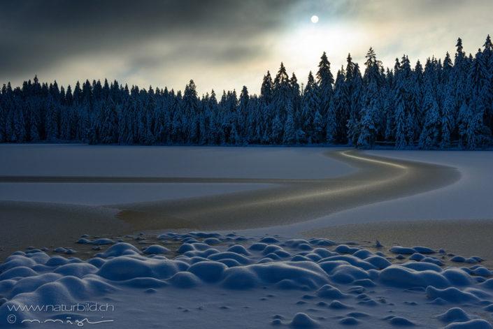 Etang Gruere Winter