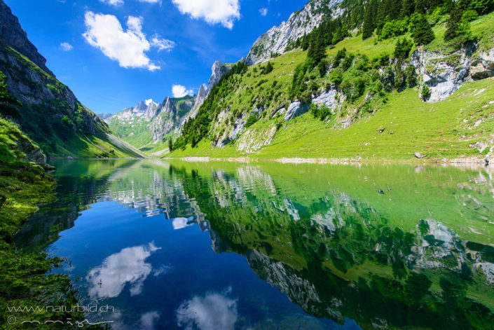 Fählensee Alpstein Bergsee