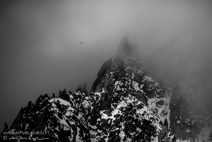 Furka Schwarzweiss Nebel