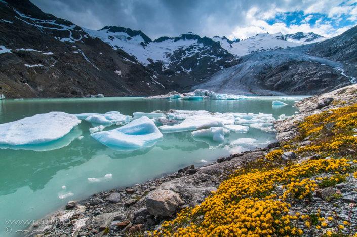 Gauli Bern Gletscher
