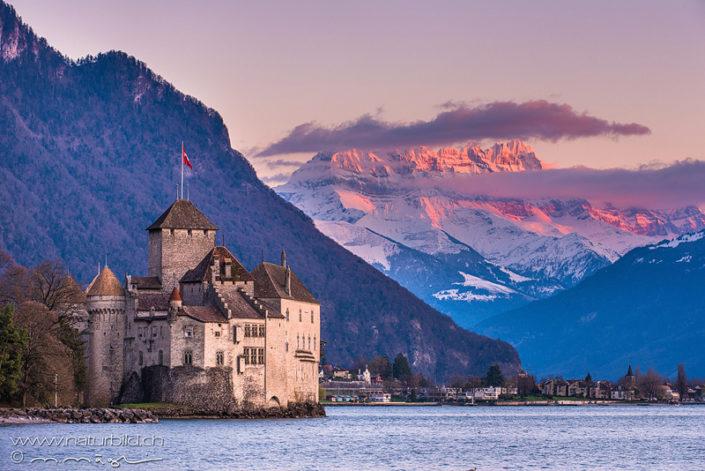 Genfersee Schloss Chillon Berge