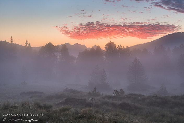 Glaubenberg Obwalden Moor