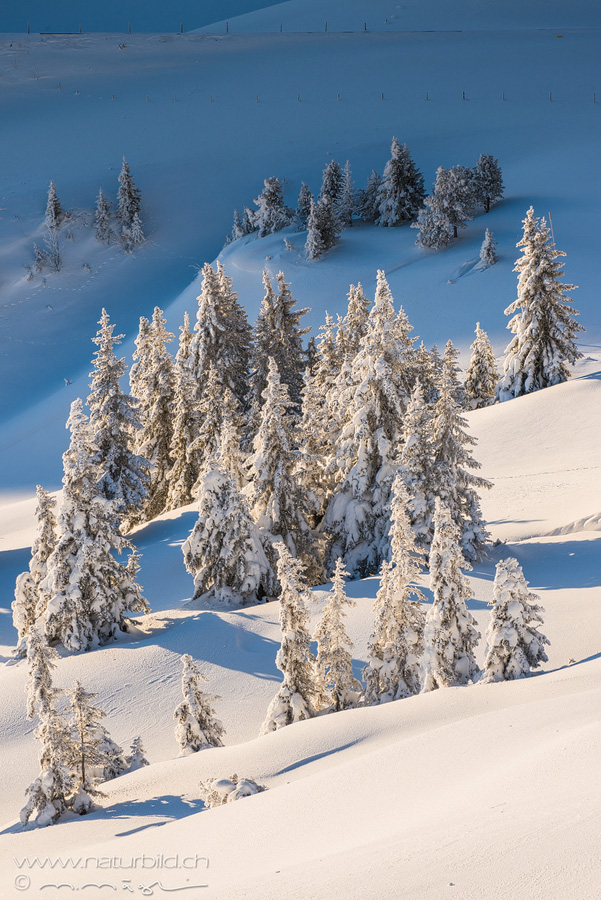 Glaubenberg Obwalden Winter