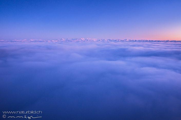 Nebelmeer Jura Alpen