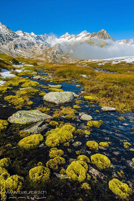 Berge Grimsel Oberaar