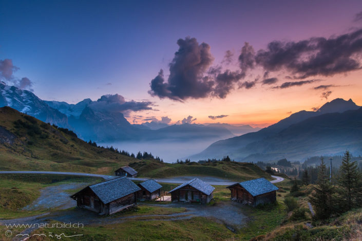 Grosse Scheidegg Alp