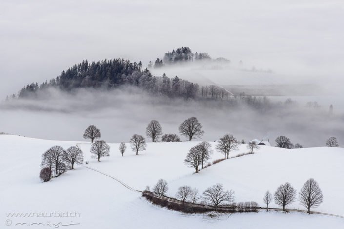 Guggisberg Guggershörnli Schnee