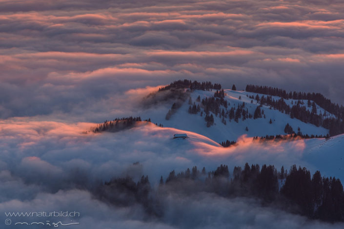 Gurnigel Gantrisch Nebelmeer