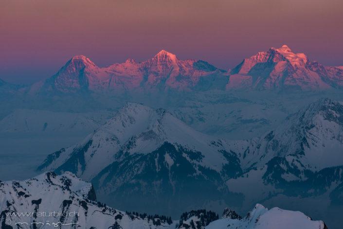 Alpen Eiger Alpenglühen