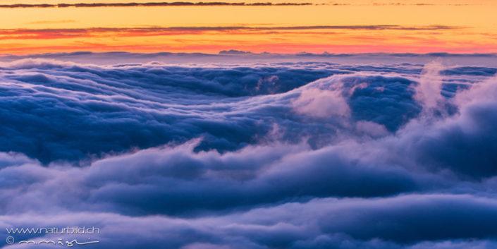 Nebelmeer Fribourg Nebel