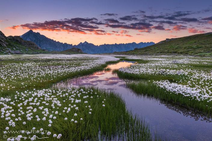 Laiozz Abend Moorlandschaft