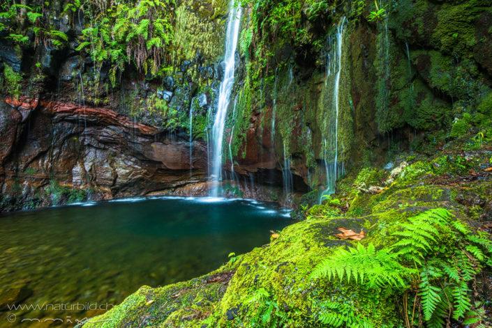 25 Fontes Madeira Wasserfall