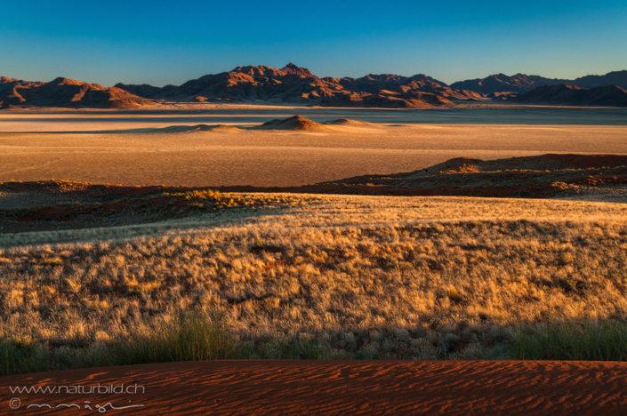 Afrika Namibrand Steppe