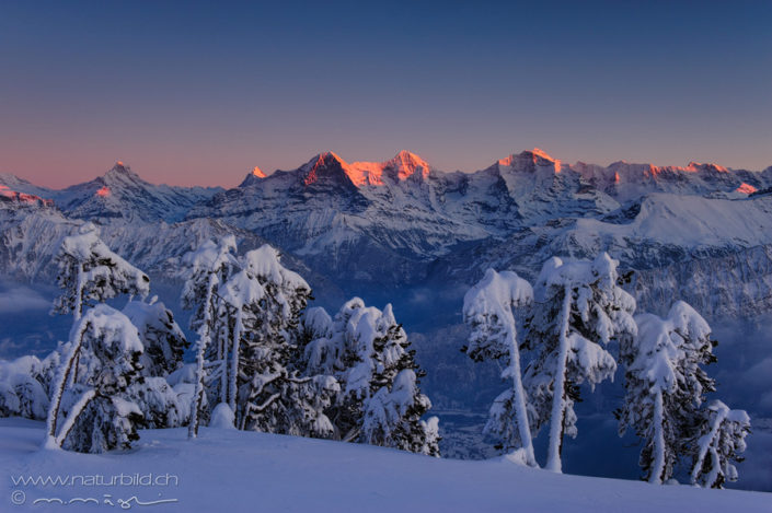 Niederhorn Winter Eiger