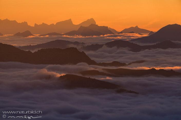Gipfel Nebelmeer Schweiz