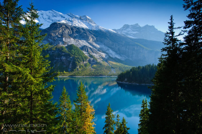 Oeschinensee Kandersteg Bergsee
