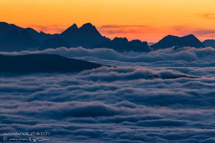 Niesen Nebelmeer Gipfel