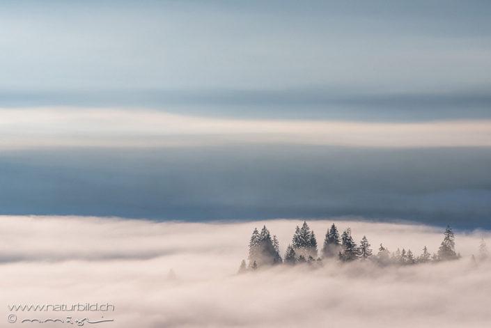 Nebel Rämisgummen Emmental