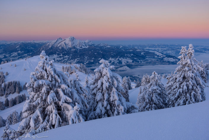 Schwyz Rigi Winter