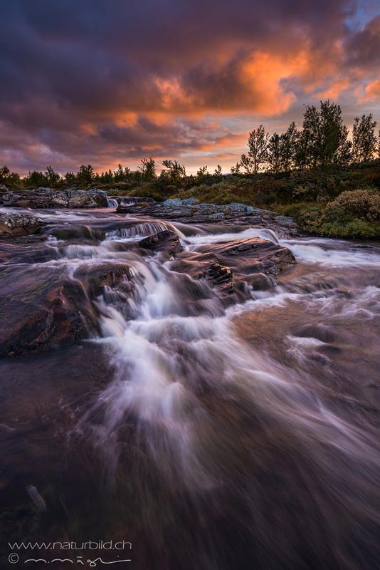 bach Rondane Norwegen