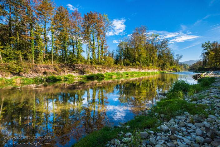 Aargau Aare renaturiert