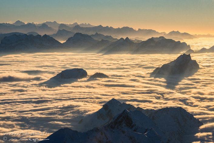 Säntis Appenzell Nebelmeer