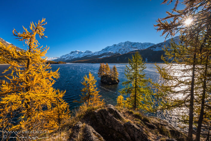 Silsersee Engadin Insel