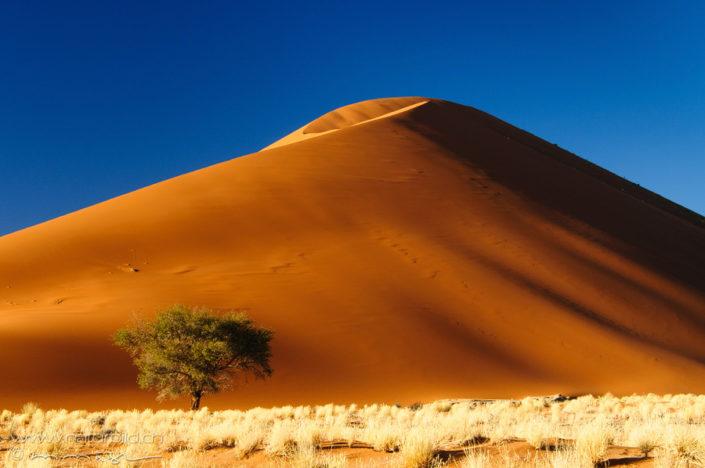 Sossusvlei Afrika Sanddüne