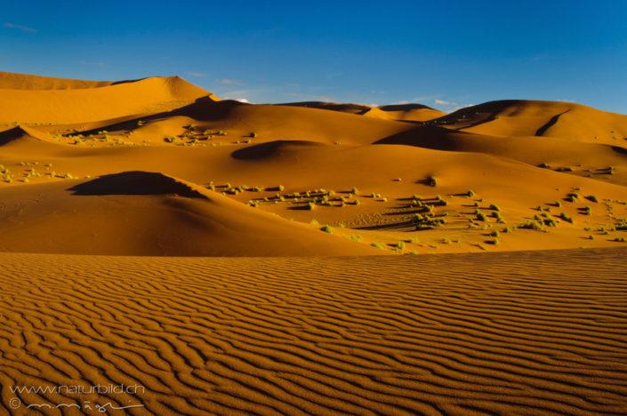 Namibia Sossusvlei Wüste