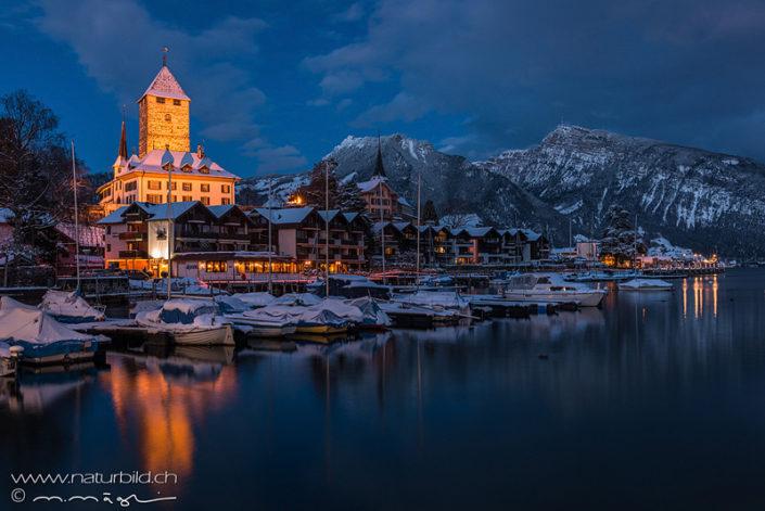 Spiez Schloss Winter