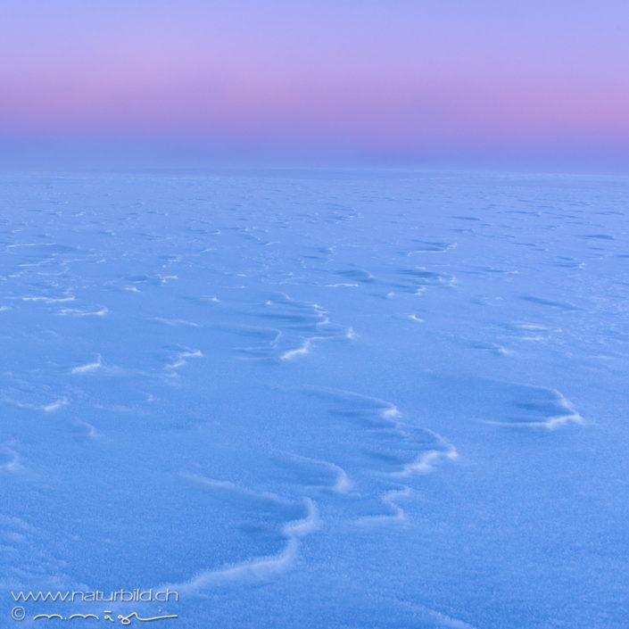 Schnee rosa Schweiz