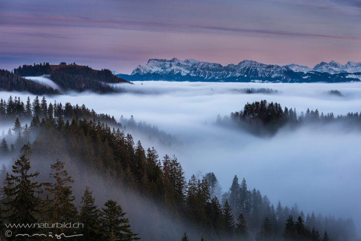 Emmental Napf Nebel