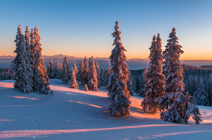 Waadt Vallee de Joux Winter
