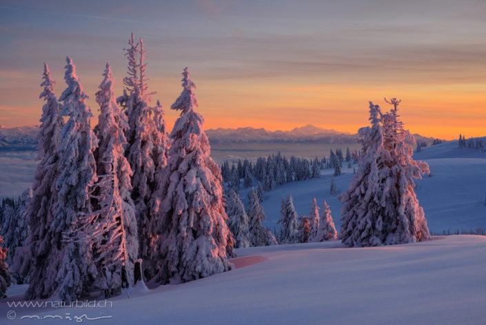 Mt Blanc Neuenburg Winter