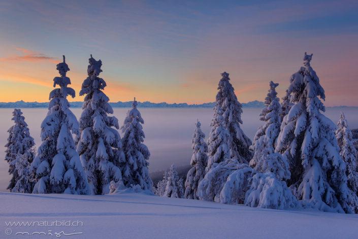 Neuenburg Winter Jura