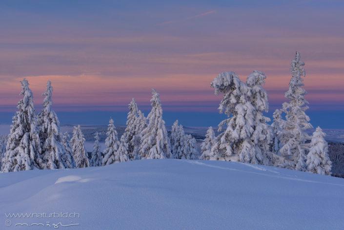 Winter Jura Schnee