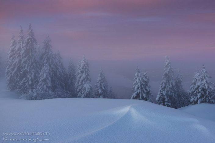 Jura Schneelandschaft Winter