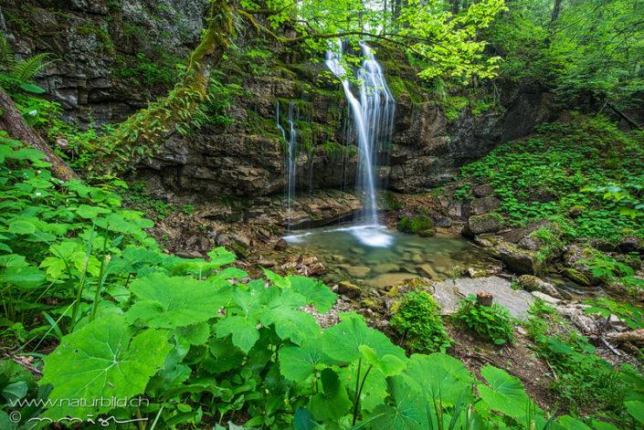 Wengibach Wasserfall St Gallen
