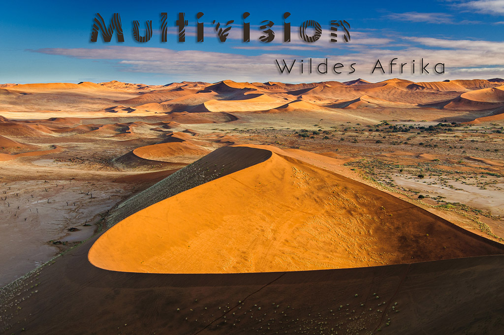 wildes_afrika