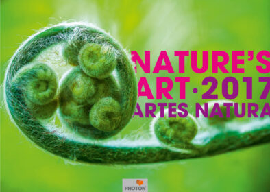 Kalender Nature's Art